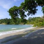 Hier wird's wild: Ort und Nationalpark Manuel Antonio