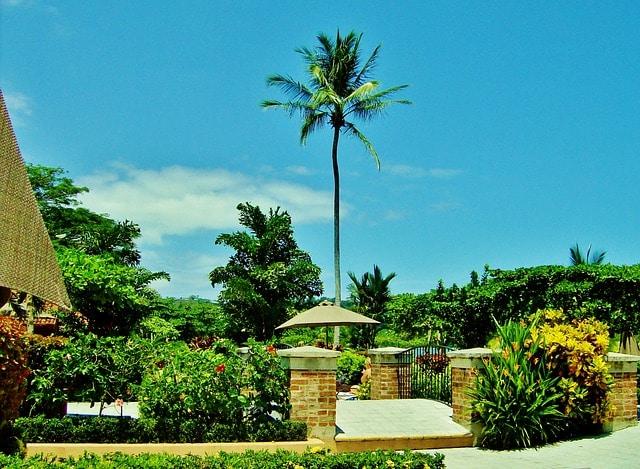 Cost Rica Hotels