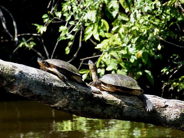 Costa Ricas Sehenswürdigkeiten