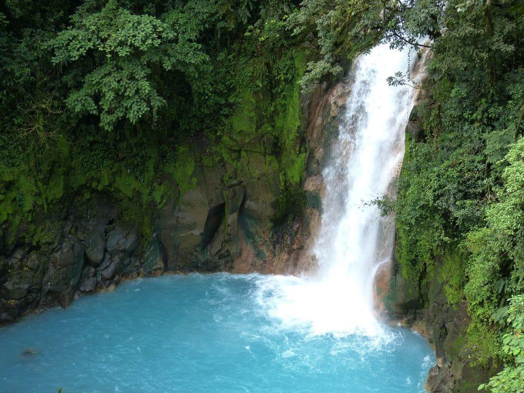 Corcovado Nationalpark - Die Perle des Südens
