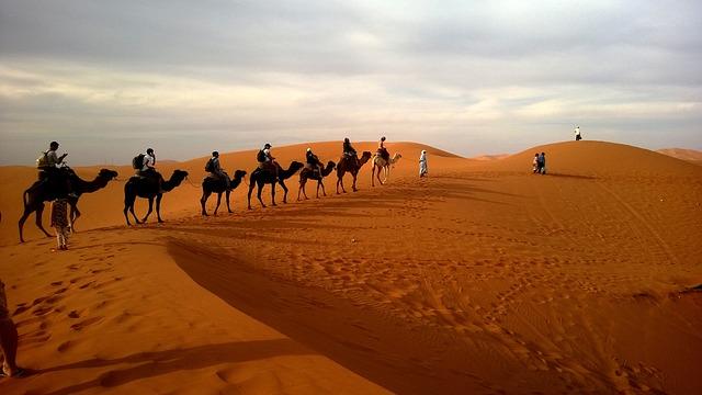 Karavane in der Wüste